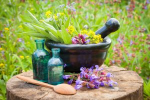 Diploma In Herbal Sciences